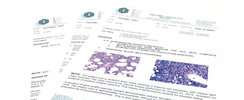 sample malayalalam duplicate license application form