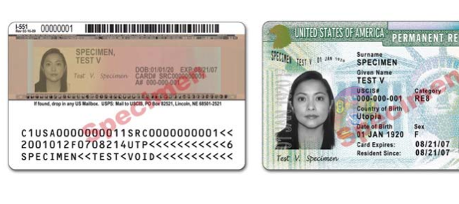 is visa number same as application id